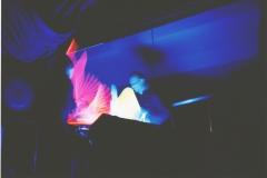 Tanz-der-Stöcke-2